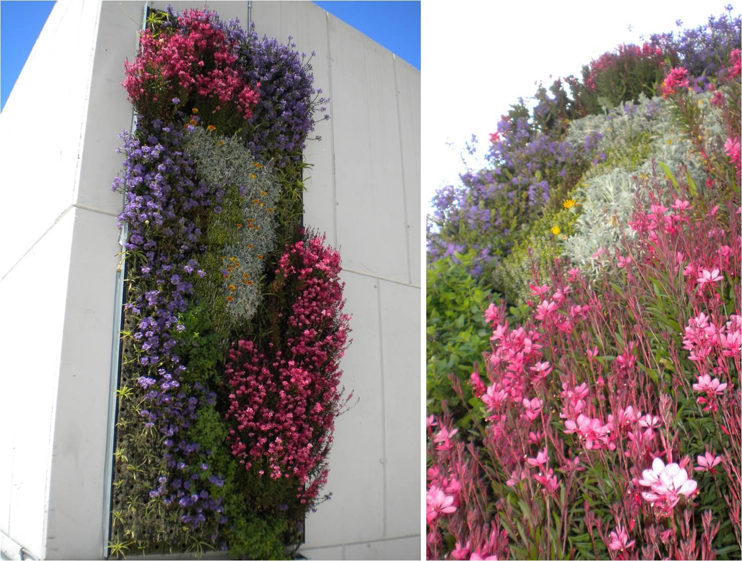 Grinea soluci n modular para jardiner a vertical for Lonas para jardines verticales